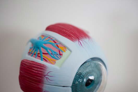 Düsseldorf Augenarzt Makuladegeneration